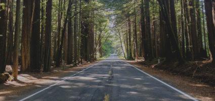 «Ακόμη κι ένα ταξίδι χιλίων μιλίων ξεκινά με ένα βήμα.»